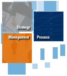 SPA - strategy management and process
